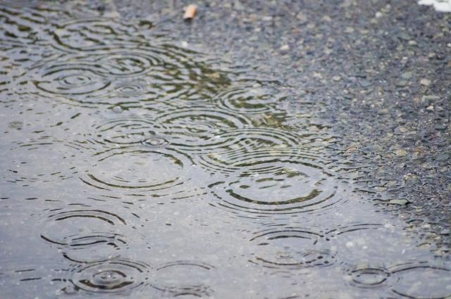 雨降りの地面