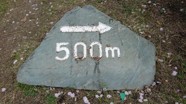 500mのポイント